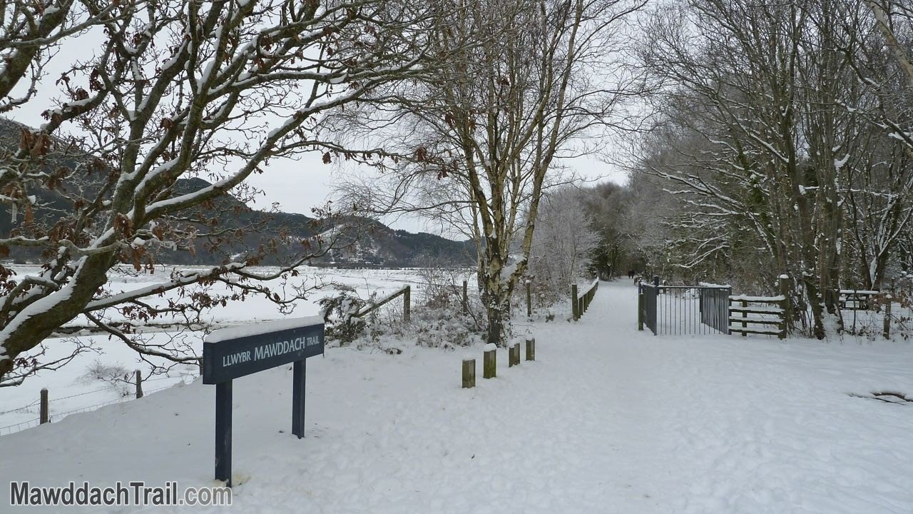 The Mawddach Trail at Penmaenpool in Winter