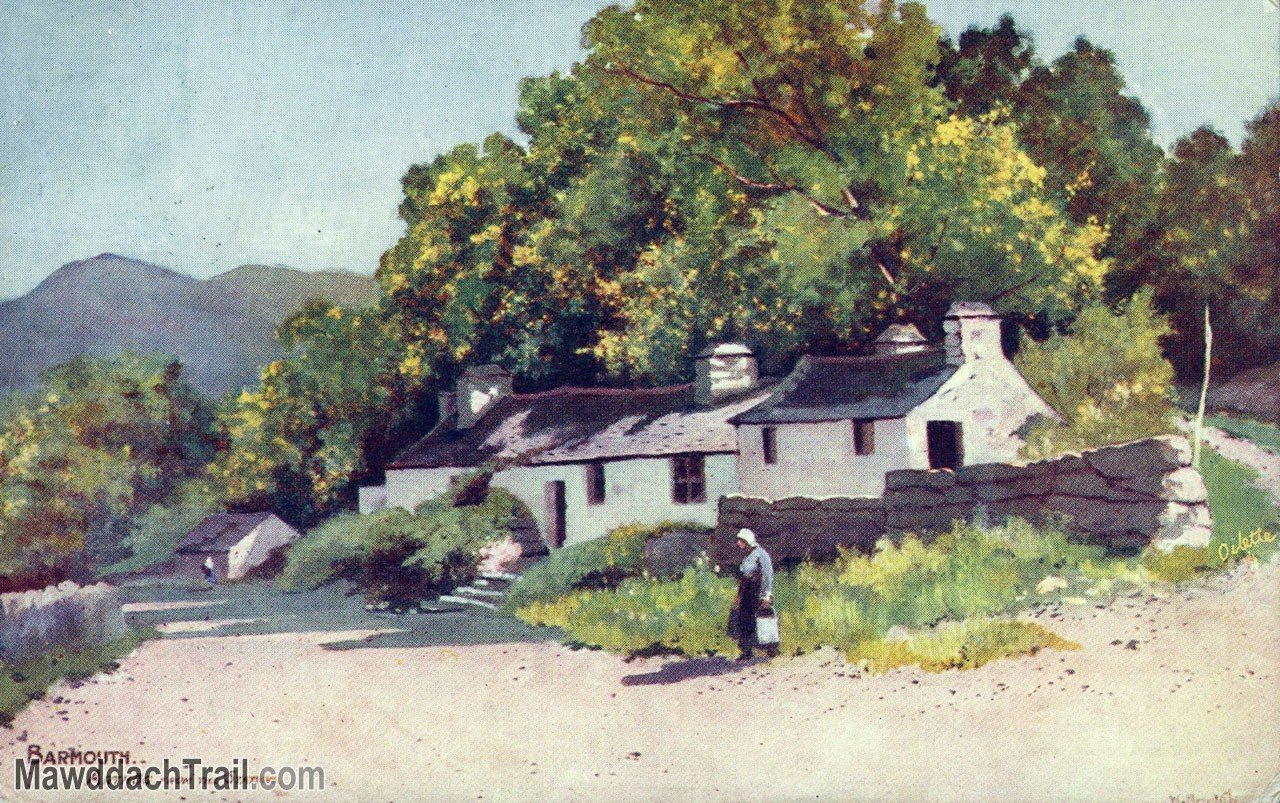 Arthog Cottages Postcard